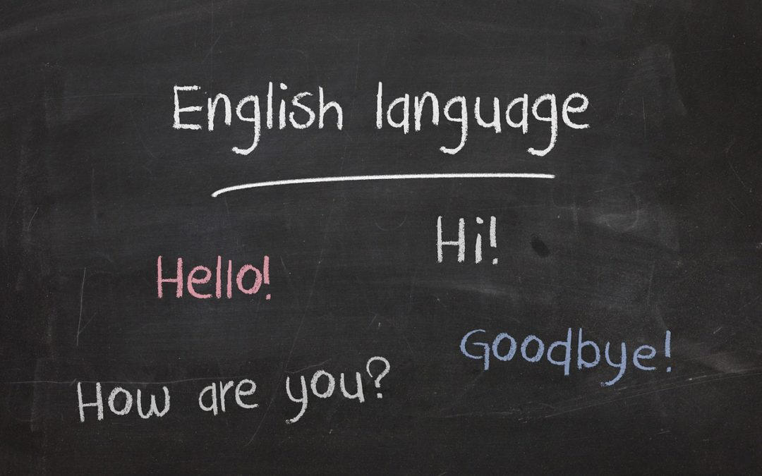Session 1: Welcome to Busy Bee English
